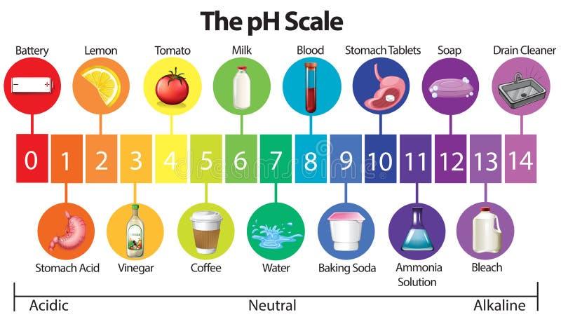 Um cartaz da educação da escala do pH ilustração royalty free