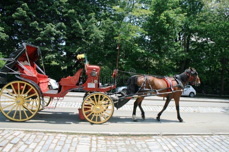 Um cavalo de baía aproveitado a um chaise vermelho no Central Park de New York foto de stock royalty free