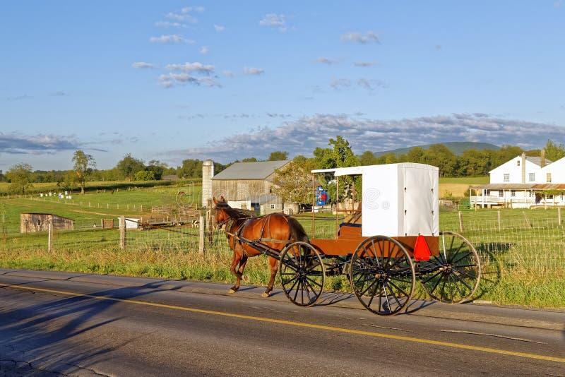 Um cavalo e um transporte de Amish viajam em uma estrada rural fotos de stock