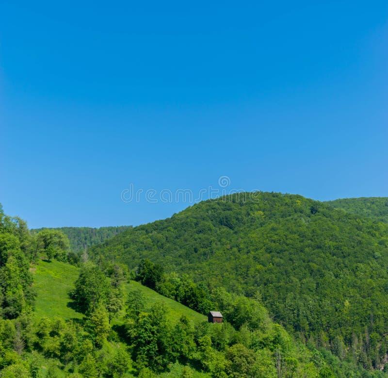 Um celeiro bonito em um monte nas madeiras imagem de stock royalty free
