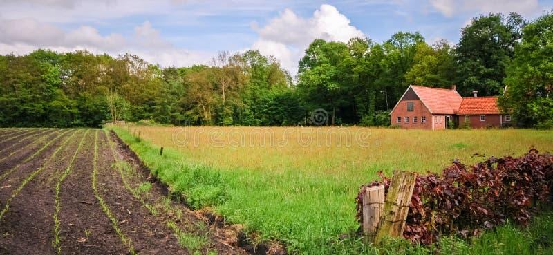 Um celeiro velho perto de Delden Overijssel, os Países Baixos imagens de stock