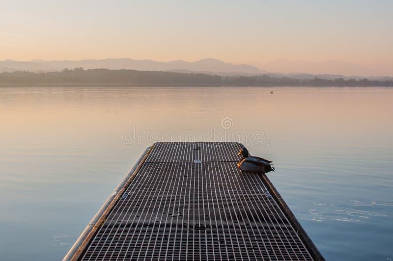 Um cenário idílico o no lago Greifensee em Suíça imagens de stock royalty free