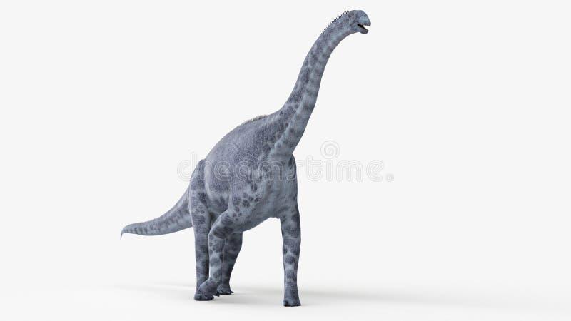 Um cetiosaurus ilustração stock