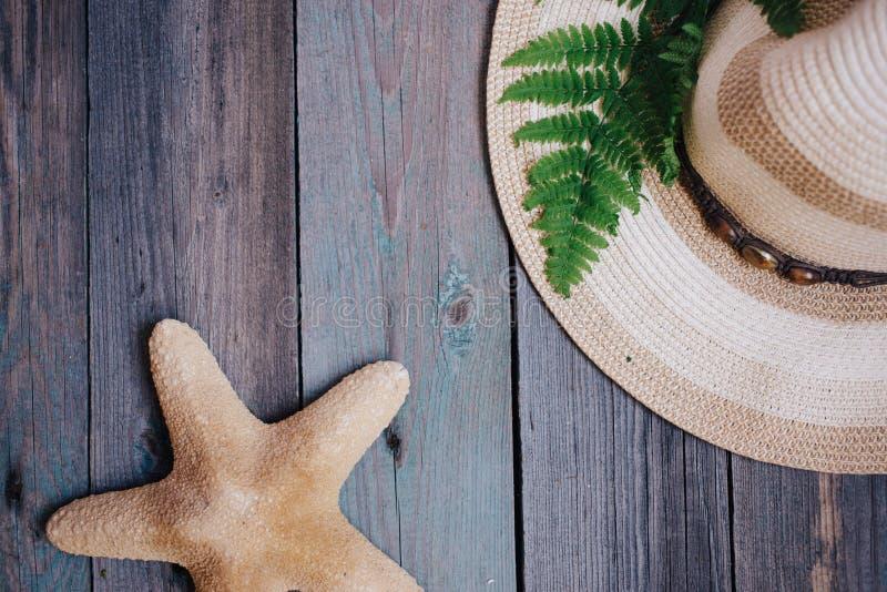 um chapéu, uma folha da samambaia, uma estrela do mar, escudos do mar na tabela de madeira imagem de stock