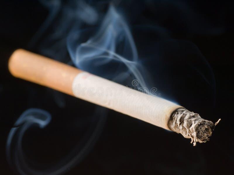 Um cigarro de fumo fotografia de stock royalty free