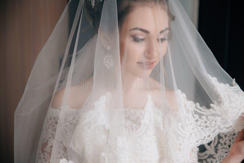 Um close-up da noiva pôs sobre um véu A cara de uma menina bonita através de uma tela branca do laço imagens de stock