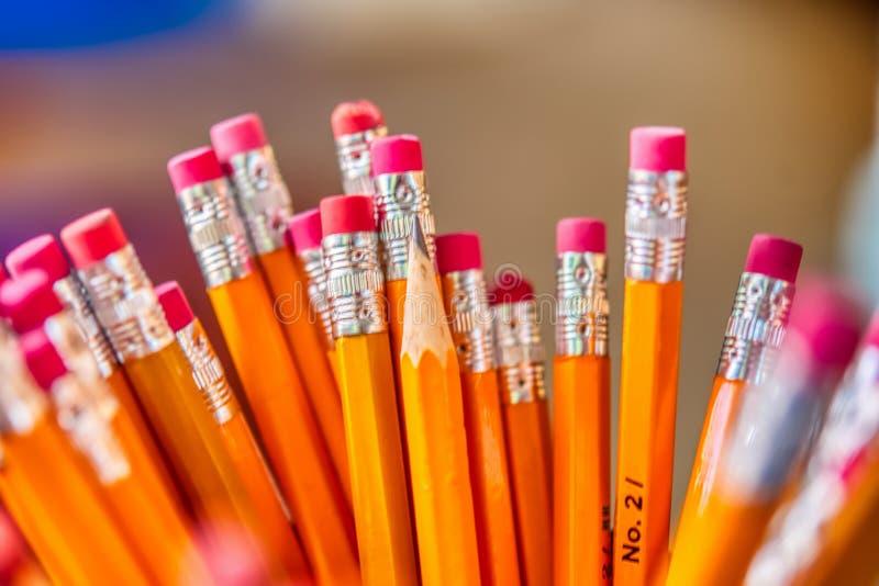Um close up de um grupo de lápis foto de stock royalty free