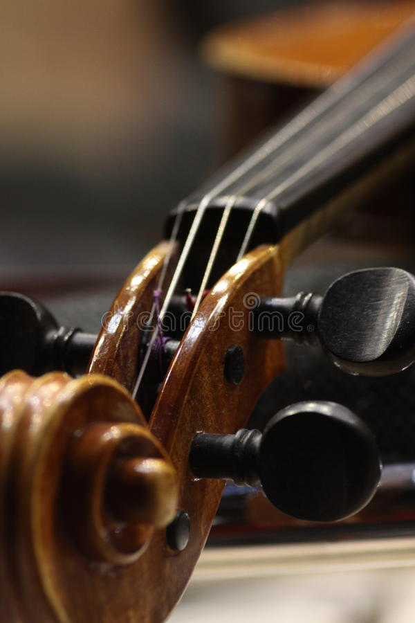 Um close-up de um pegbox do violoncelo foto de stock royalty free