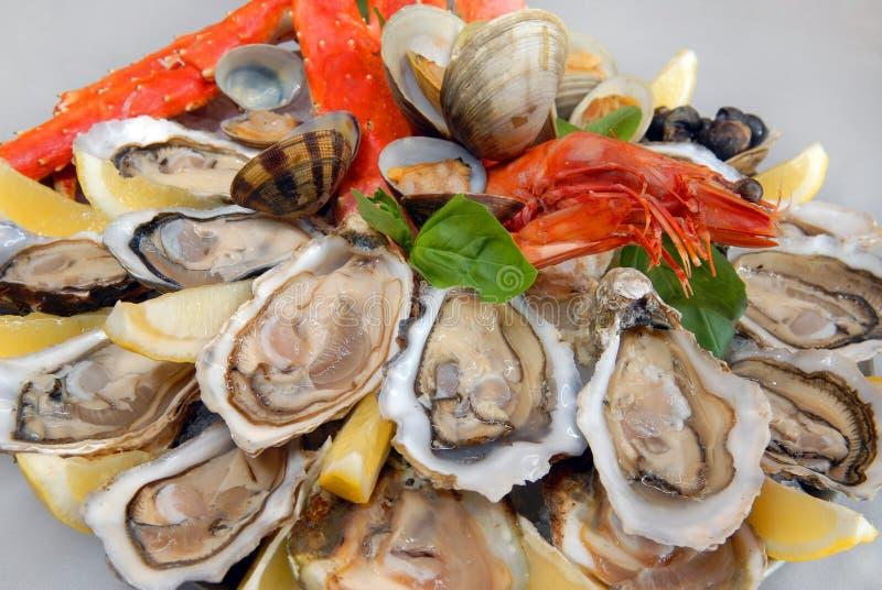 Um cocktail do marisco fotografia de stock royalty free