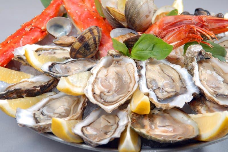 Um cocktail do marisco fotos de stock royalty free