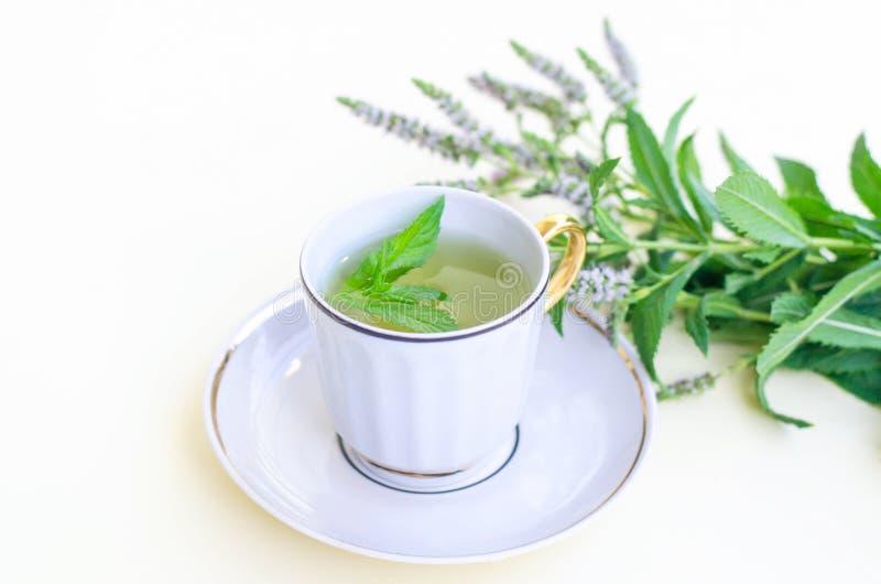Um copo com uns pires do chá da hortelã em um fundo amarelo fotografia de stock
