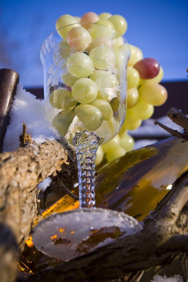 Download Um copo das uvas imagem de stock. Imagem de branco, inverno - 12811345