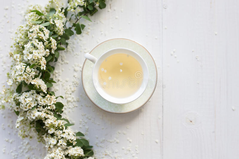 Um copo delicado do vintage rosas Configuração lisa imagens de stock royalty free