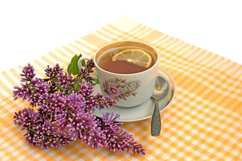 Um copo do chá com limão e lilac foto de stock