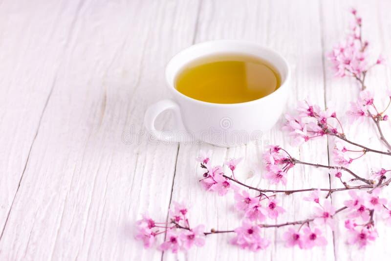 Um copo do chá e do ramo de árvore florescido da cereja, usando a tabela de madeira branca imagem de stock royalty free