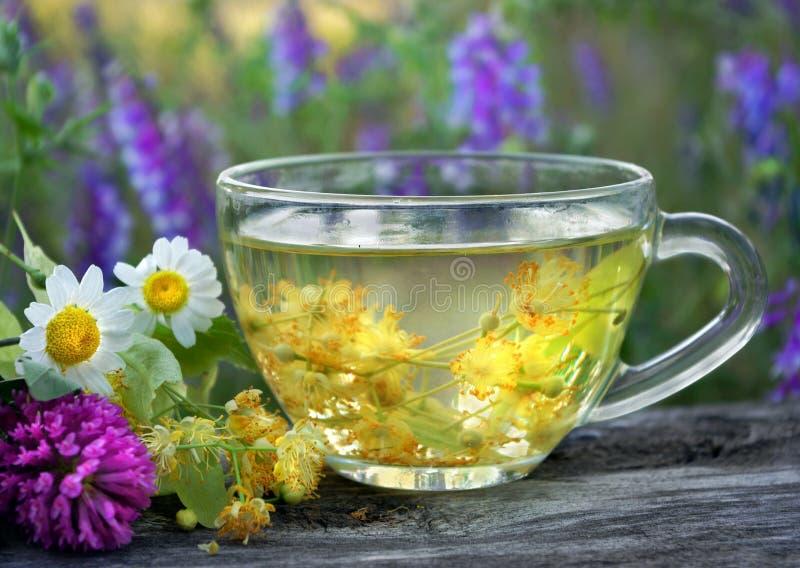 Um copo do chá do Linden e de ervas medicinais em uma tabela de madeira trevo, camomila e Linden frescos Ch? erval gripe e remédi imagem de stock