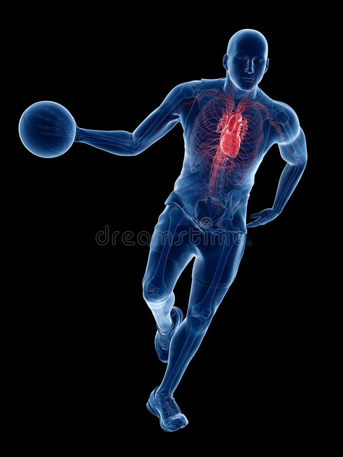 Um coração dos jogadores de basquetebol ilustração royalty free