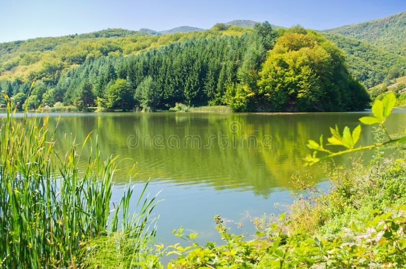 Um de muitos lagos no parque nacional de Semenic foto de stock