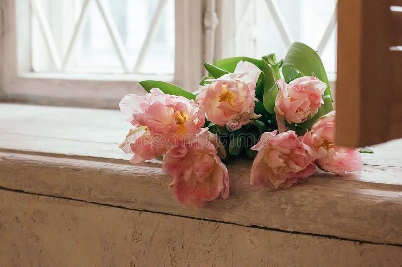 Um delicado focalizou flores cor-de-rosa da peônia no peitoril branco da janela fotografia de stock