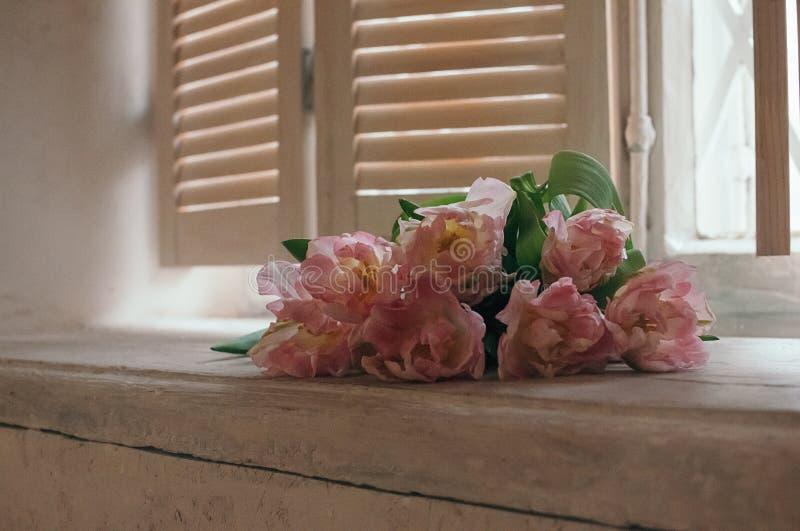 Um delicado focalizou o ramalhete das flores em um peitoril da janela, luz maçante foto de stock