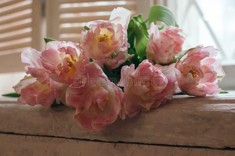 Um delicado focalizou o ramalhete das flores em um peitoril da janela, opinião do close up foto de stock