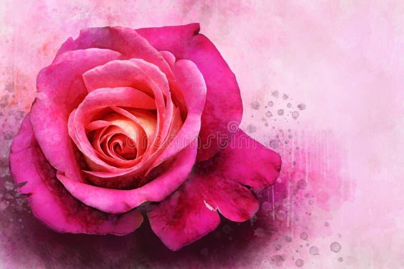 Um desenho da aquarela de uma flor cor-de-rosa cor-de-rosa vibrante Placa bot?nica suculento - abandone o cacto, o cacto de pera  ilustração royalty free