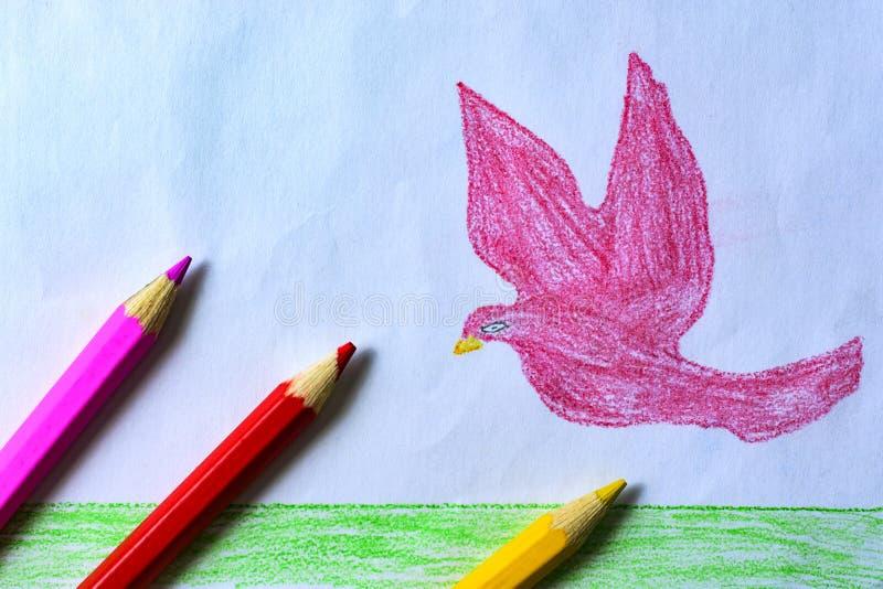Um desenho do ` s da criança de uma pomba, de uma grama e de um céu do rosa com lápis coloridos fotos de stock