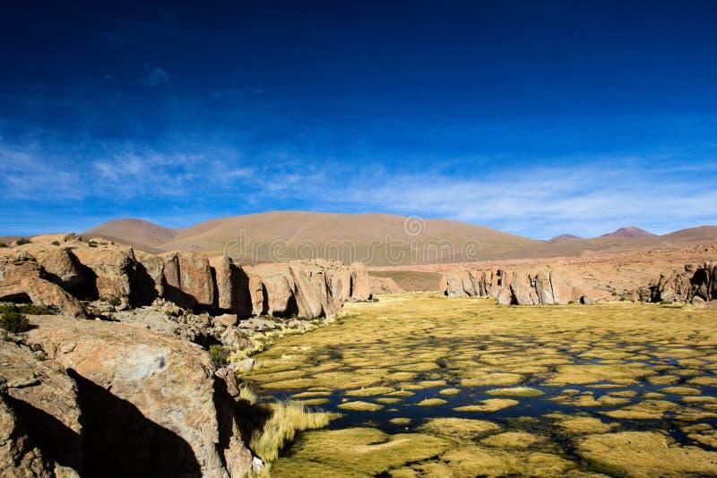 Um deserto no altiplano dos andes em Bolívia fotografia de stock
