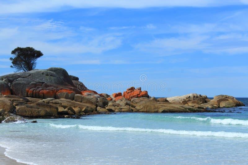 Um dia bonito e quente na baía de Binalong, Tasmânia, Austrália fotos de stock royalty free
