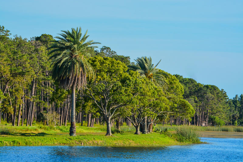 Um dia bonito para uma caminhada e a vista da ilha em John S Taylor Park no Largo, Florida foto de stock
