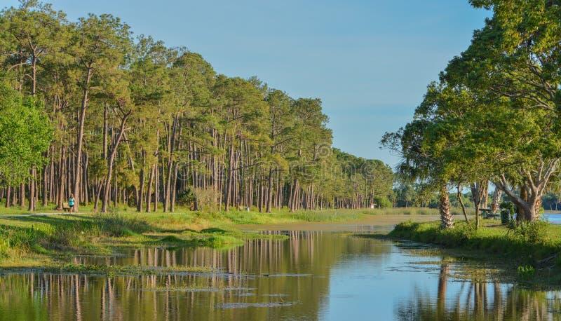 Um dia bonito para uma caminhada e a vista da ilha em John S Taylor Park no Largo, Florida fotos de stock royalty free