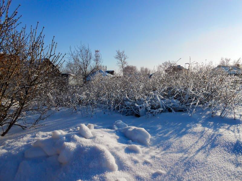 Um dia claro do inverno, uma paisagem rural com um jardim rústico coberto com a neve Ramos congelados das árvores no fundo são vi foto de stock royalty free