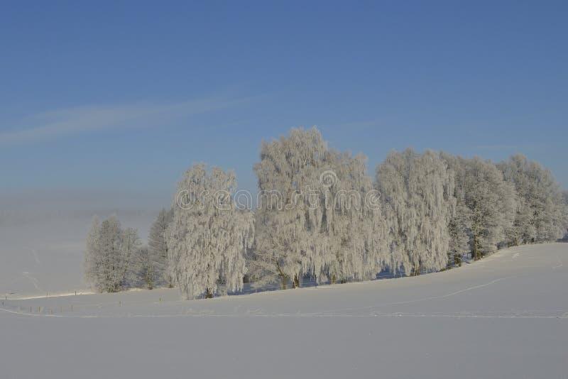Um dia de inverno frio no saxão imagens de stock royalty free
