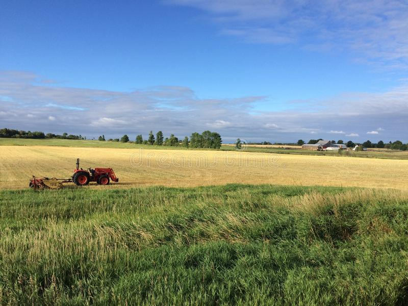 Um dia na exploração agrícola fotos de stock royalty free