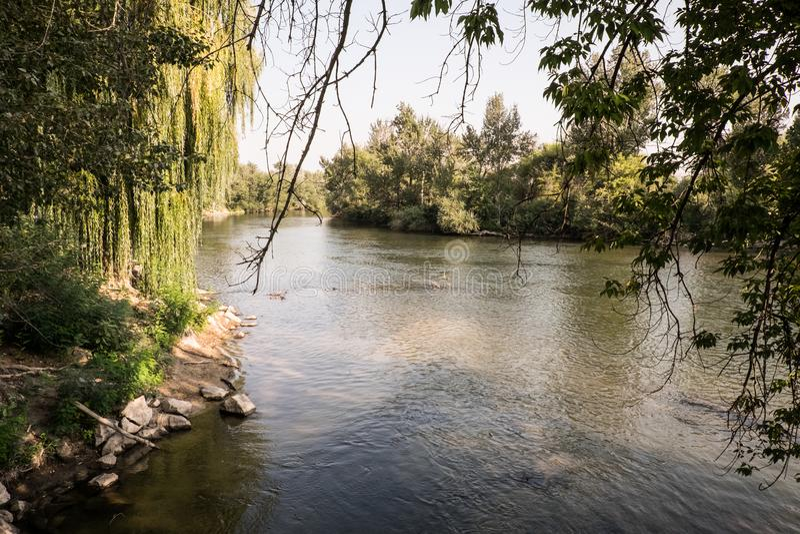 Um dia no rio de Boise fotos de stock royalty free