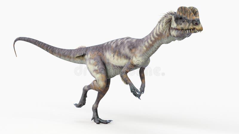 Um dilophosaurus ilustração do vetor