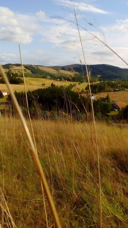 Um Dorffeld stockbilder