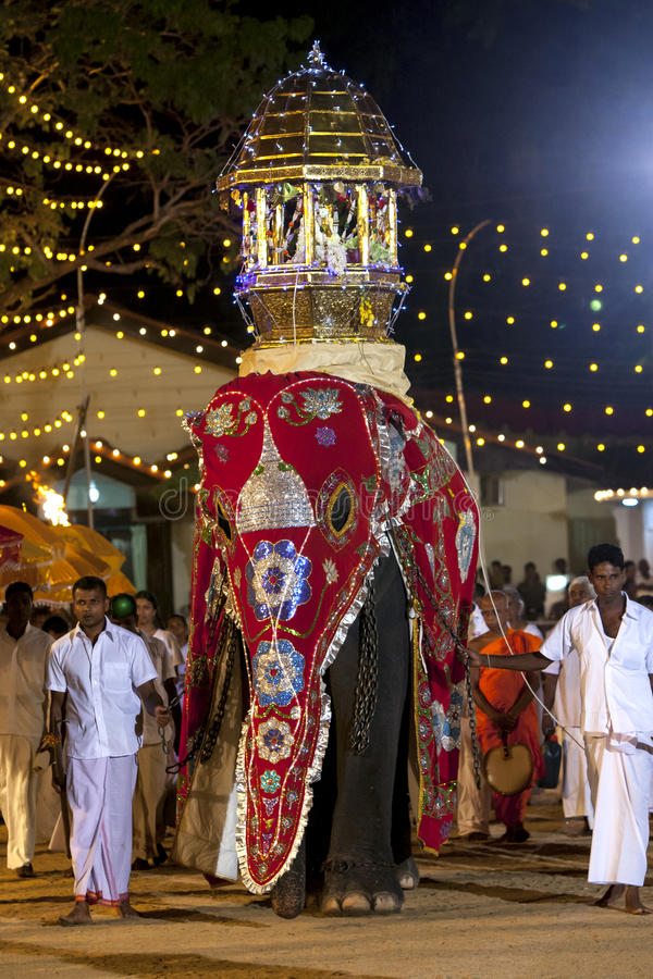 Um elefante cerimonial belamente vestido desfila com o festival de Kataragama em Sri Lanka foto de stock royalty free