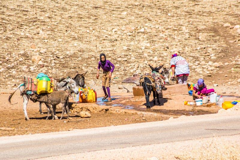 Um er-Rbia, Marruecos - 15 de octubre de 2013 Mujeres del Berber que recogen el agua a los barells con los burros fotos de archivo libres de regalías