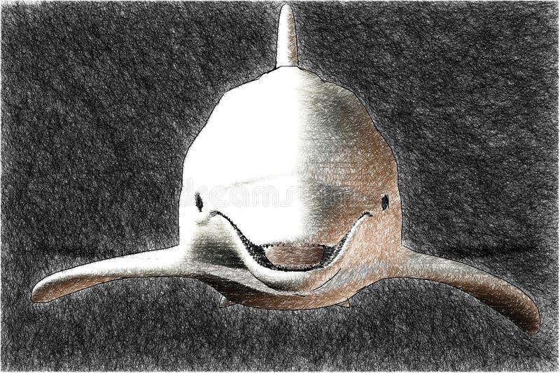 Um esboço do golfinho ilustração stock