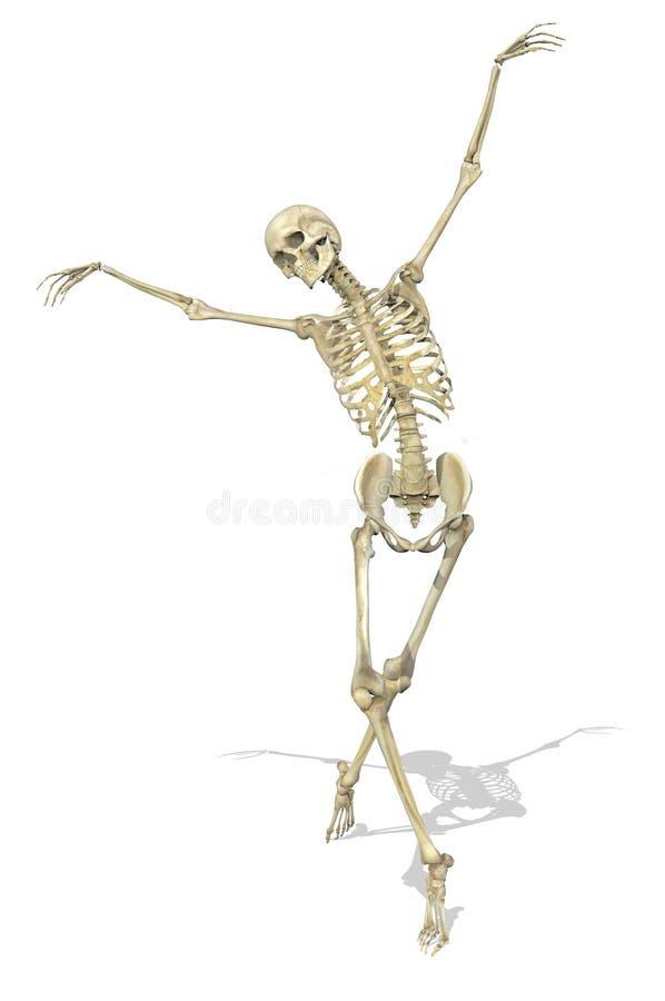 Um esqueleto toma um Pose gracioso ilustração royalty free