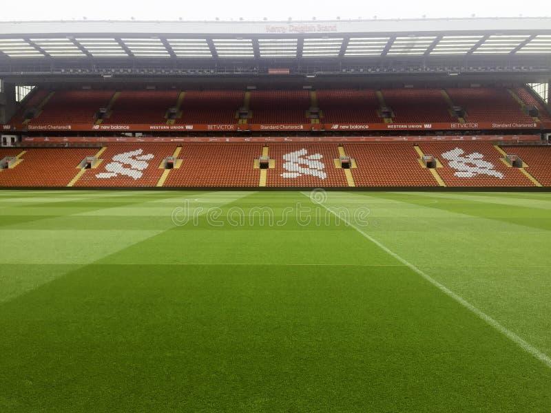 um estádio de futebol vazio com grama verde foto de stock royalty free