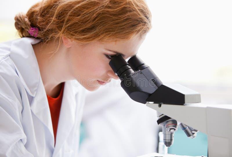 Um estudante da ciência que olha em um microscópio fotografia de stock