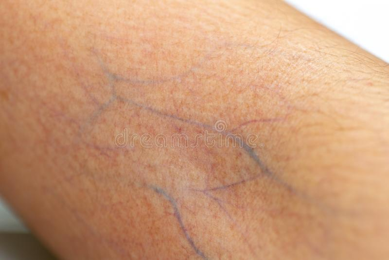 Um exame do tecido, nervos, tendões à mão foto de stock royalty free