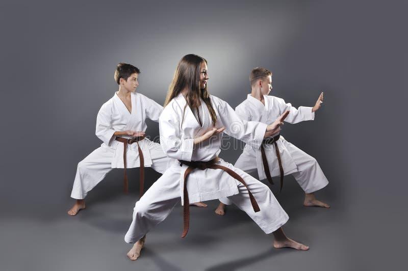 Um fêmea e karaté marrom masculino da correia dois que faz o kata fotografia de stock royalty free