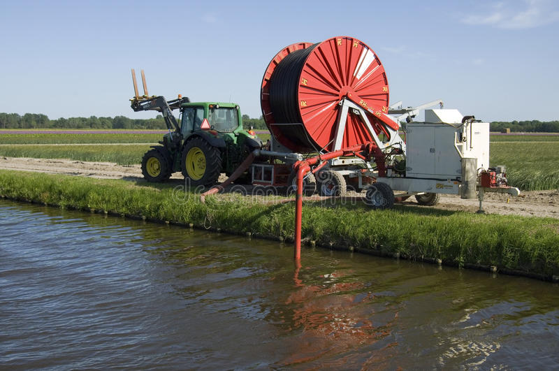 Um fazendeiro holandês do bulbo precisa a irrigação artificial foto de stock