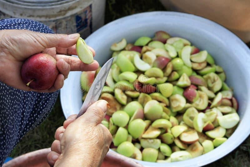 Um fazendeiro limpa as maçãs cortando as com uma faca e jogando as partes em uma bacia do esmalte fotografia de stock royalty free
