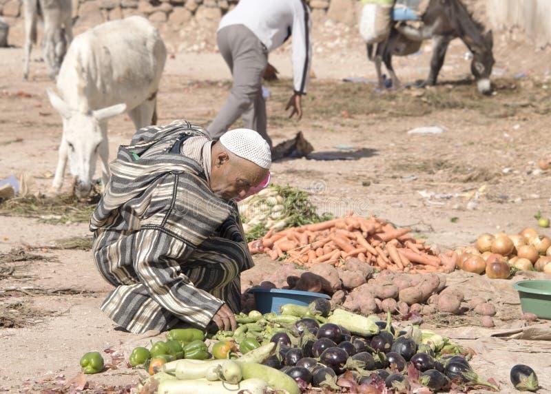 Um fazendeiro senta o waitnig para vender seu produto no mercado livre do berber semanal fora de Essaouira em Marrocos As mulhere imagens de stock