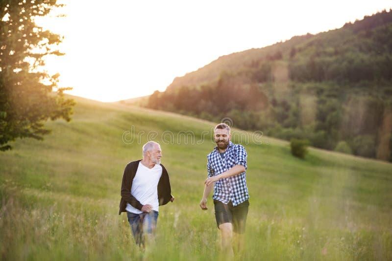 Um filho adulto do moderno com o pai superior que anda na natureza no por do sol fotografia de stock royalty free