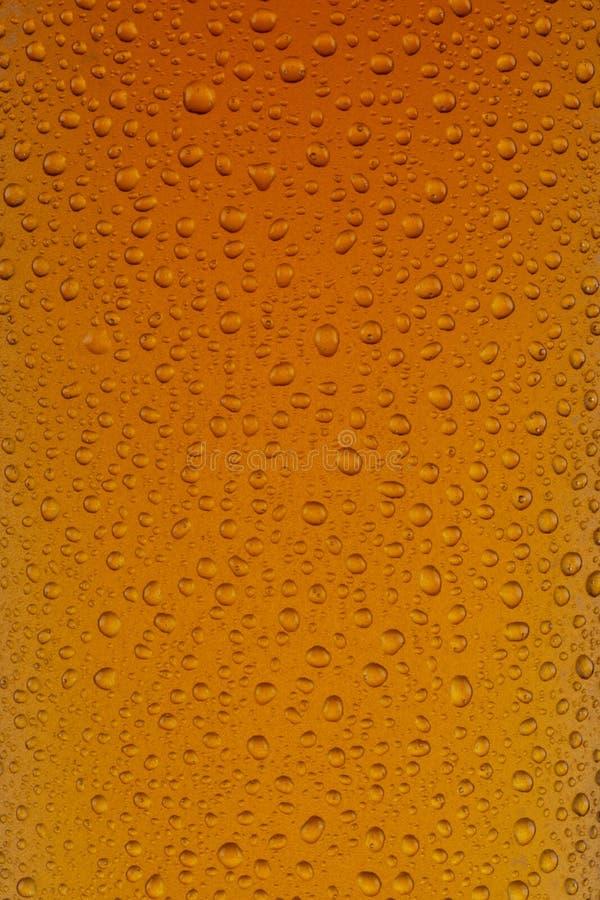 Um fim acima de um vidro do indiano Pale Ale imagem de stock